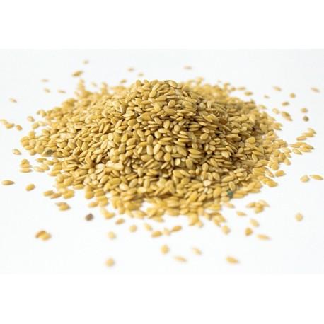 Linų sėmenys auksiniai